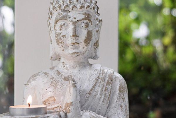 Willy van Berkel Aura- chakra en lichaamshealing