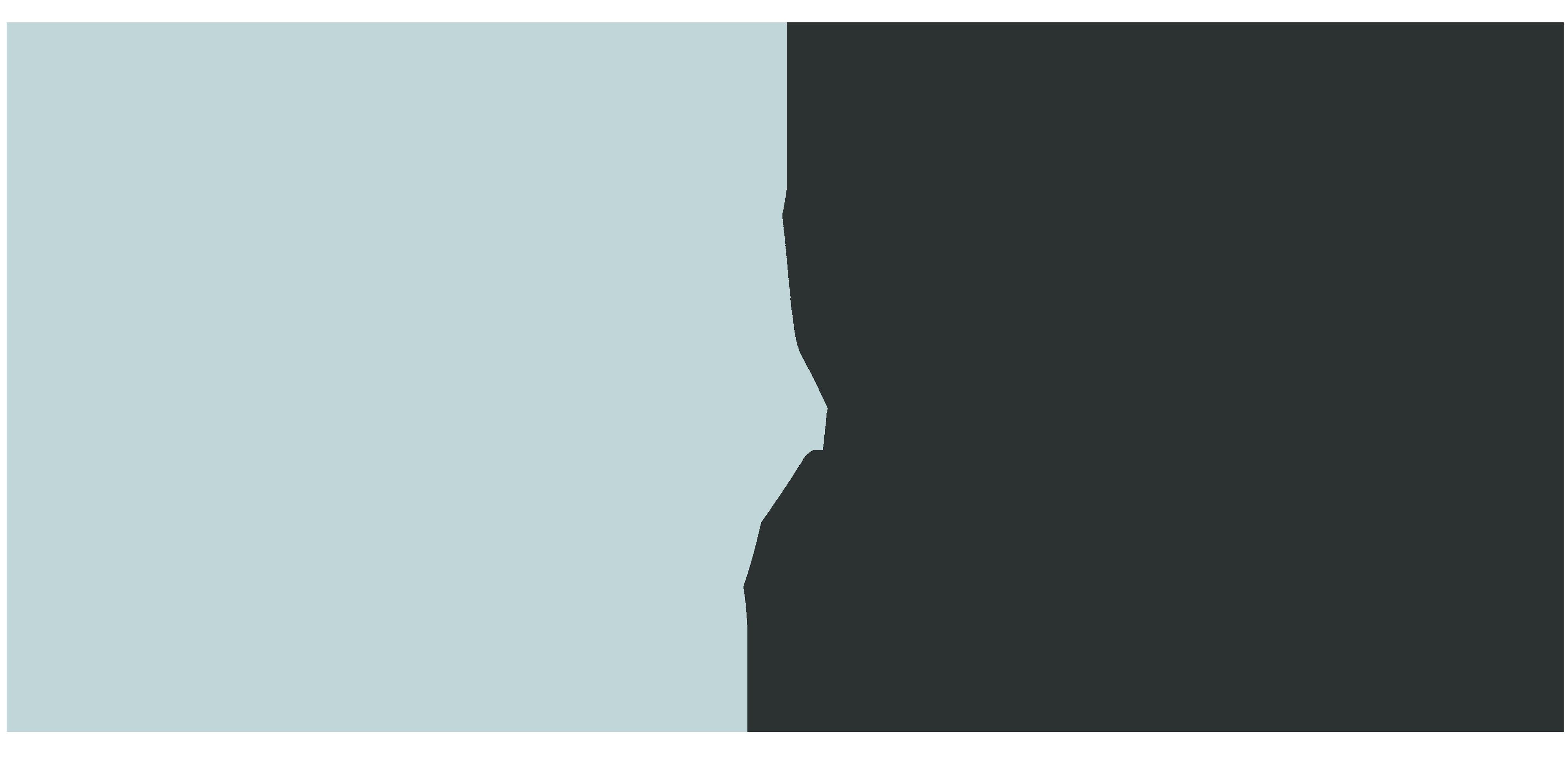 Willy van Berkel